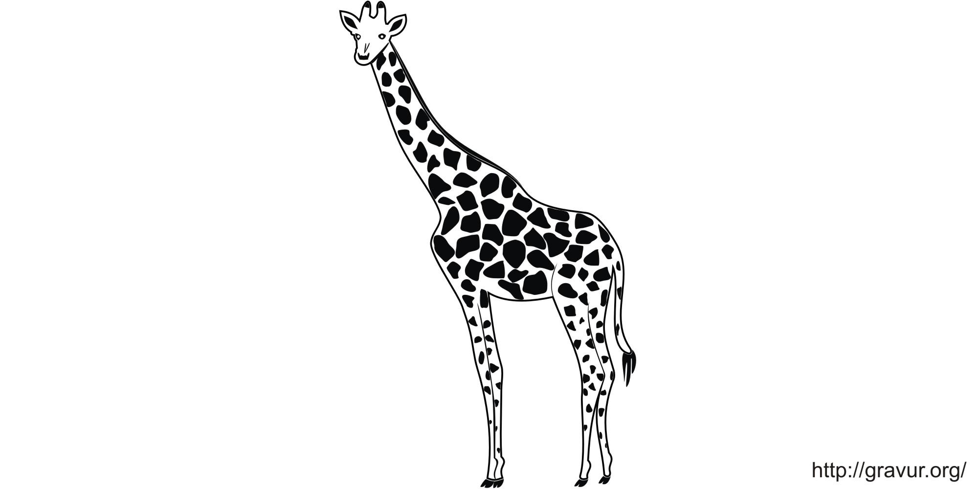 Tribal giraffe tattoo - photo#25